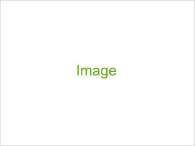 乳房再建(温存療法ー人工乳房使用例)
